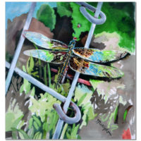 Watercolor Print – Dragonfly